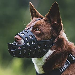 Mayerzon Dog Muzzle, Soft Basket Muzzle for Dogs, Prevents Biting, Chewing and Licking, Allows Panting and Drinking