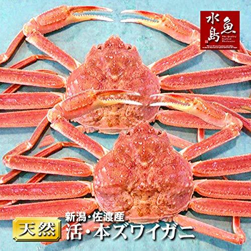 魚水島 活ズワイガニ姿 新潟・佐渡産「活 本ズワイガニ」(生 本ずわい蟹)特大800g以上 2杯