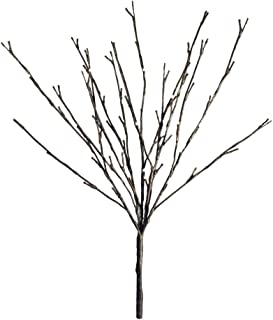 Hi-Line Gift LtdFloral Lights Lighted Willow Branch with 60 Bulbs, 20 inches