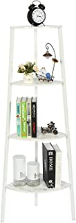 HOME BI 4-Tier Industrial Corner Ladder Shelf,Bookcase,Storage Rack,Plant Stand Accent Metal Frame Furniture Home Office (White)