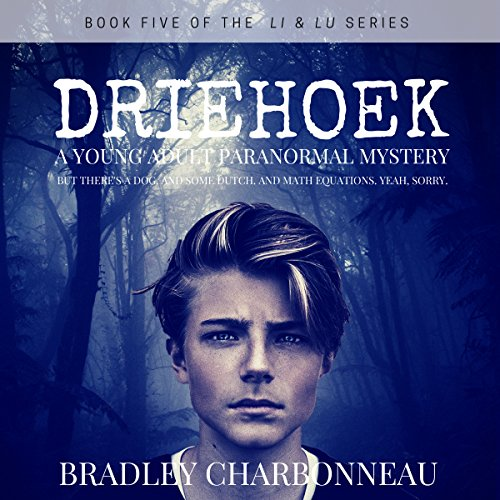 Driehoek audiobook cover art