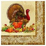 Rustic Turkey Thanksgiving Luncheon Napkins, 20ct