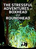 The Stressful Adventures of Boxhead and Roundhead...
