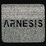 Arnesis