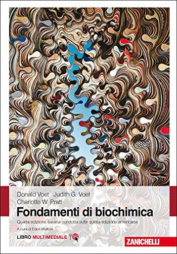 Fondamenti di biochimica. Con e-book