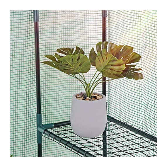 """Mini Walk-in Greenhouse Indoor Outdoor -2 Tier 8 Shelves- Portable Plant Gardening Greenhouse (57L x 57W x 77H Inches… 4 【Strong Construction】This mini walk-in greenhouse is built with high quality metal frame with powder coating, durable bearing net on each layer is strong enough to hold more seed trays, pots and plants growth. The clear waterproof PE cover protects plants from frost or pests while allowing nourishing sunlight to pass through. 【Indoor Outdoor Greenhouse】Waterproof and UV protection, ideal growing environment , can be used indoor and outdoor at all seasons. Perfect for protecting young plants or extending the plant growing season. 【Portable & Easy Setup】Overall Dimensions: 57""""L x 57""""W x 77""""H, Perfect Size for Easy Moving to Indoor or Outdoors. Easy to assemble, no tools required. Enjoying a lot of fun of the flowers and plants in your leisure time!"""