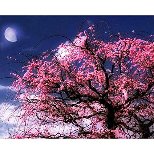 5D DIY Diamond Painting Kits Pink Flower Tree at Night Full Drill Cross Stitch Kit Crystal Embroidery Pictures Cross Stitch Art Craft for Home Decor 12x16 inch(Frameless)