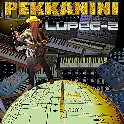 Pekkanini