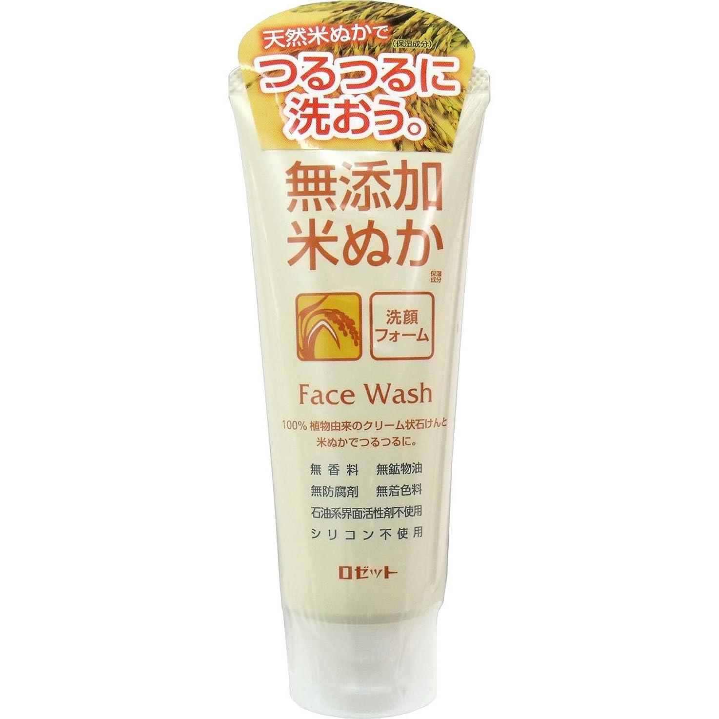 広々とした愛先住民【ロゼット】無添加米ぬか洗顔フォーム 140g ×10個セット