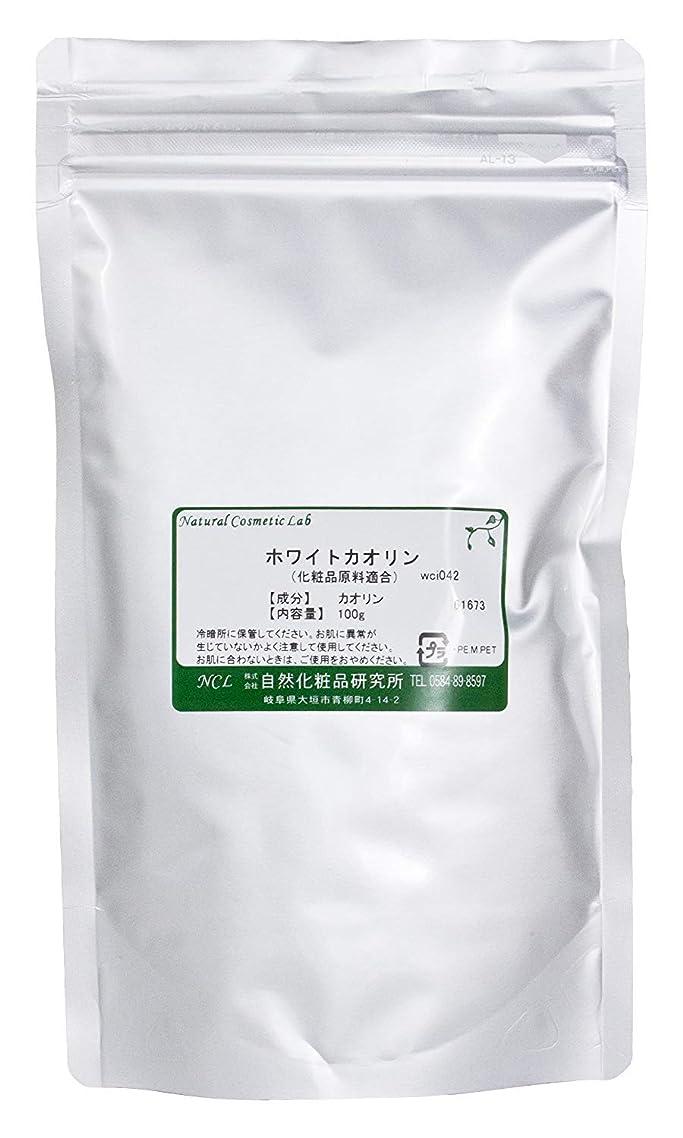 摩擦経営者重々しいホワイトカオリン 100g 【手作り化粧品原料】