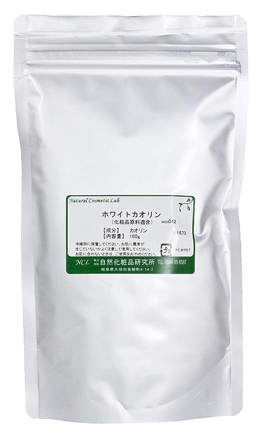 新鮮なリビングルーム山積みのホワイトカオリン 100g 【手作り化粧品原料】
