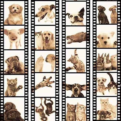 murando - PURO TAPETE - Realistische Tapete ohne Rapport und Versatz 10m Vlies Tapetenrolle Wandtapete modern design Fototapete - Tiere Katze Hund Pferde Schwein Kaninchen g-C-0026-j-c