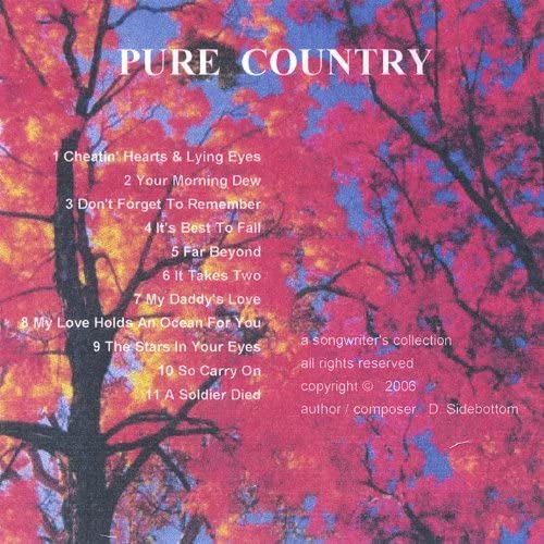 The Pure Country Band