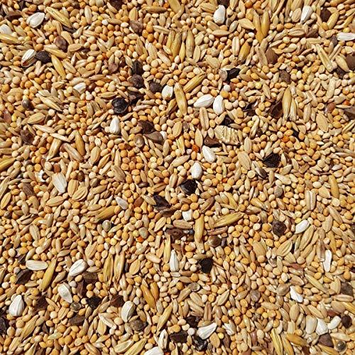 Supravit Agaporniden & Neophemafutter 5 kg, Körnermischung mit Saaten für Kleinpapageien und Sittiche