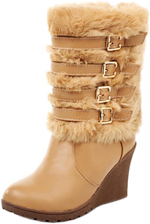 AicciAizzi Women Fashion Wedges Heels Warm Winter Ankle Boots