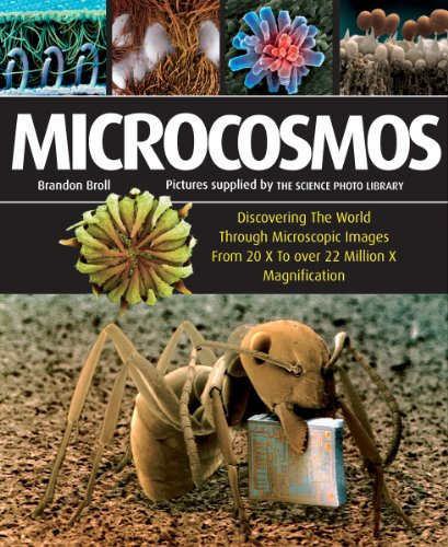 Microcosmos: Discovering The World Through Microscopic Images From 20 X to Over 22 Million X Magnification