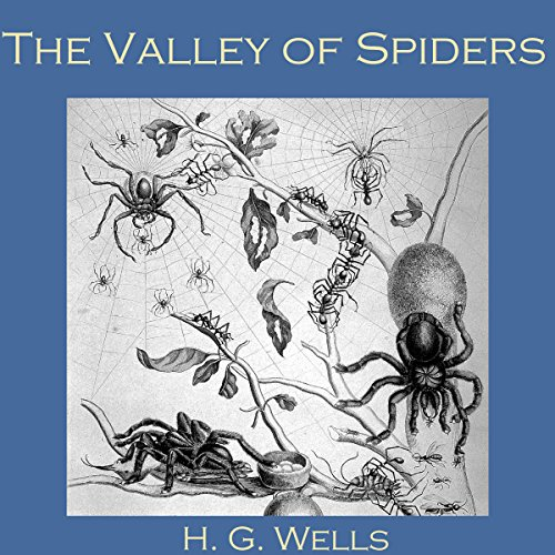 Couverture de The Valley of Spiders