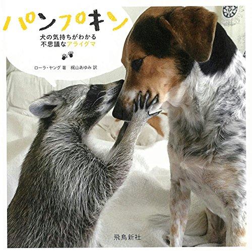 パンプキン——犬の気持ちがわかる不思議なアライグマ