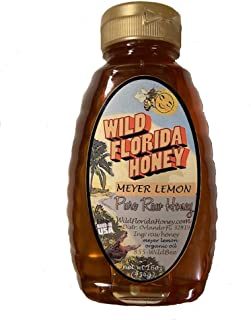 Mayer Lemon Natural Honey 16oz - Wild Florida Honey