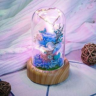 MOSINITTY - Luz nocturna con altavoz Bluetooth, 3 modos de luz en forma de corazón rosa con lámpara de noche de cristal para San Valentín
