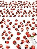 HomeTools.eu - 100 Stück, Lustige Bunte Marien-Käfer Glücksbringer 3D Holz-Figuren Sticker selbst-klebend, Aufkleber, echt Holz, bemalt, 100er Pack