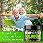 Hemp Pain Relief Cream - Relieves Muscle, Joint Pain - Lower Back Pain - Inflammation - Hemp Oil Extract with Msm - Emu…