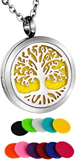 HooAMI Aromatherapy Essential Oil Diffuser Necklace Stainless Steel Perfume Locket Pendant with 12 Refill Pads