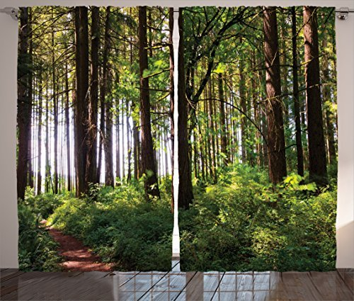 """Ambesonne Forest Curtains, Pathway in a Shady Forest of Bushes and Thick Trunks Grass Unique Wild Life Scenery, Living Room Bedroom Window Drapes 2 Panel Set, 108"""" X 84"""", Green Brown"""