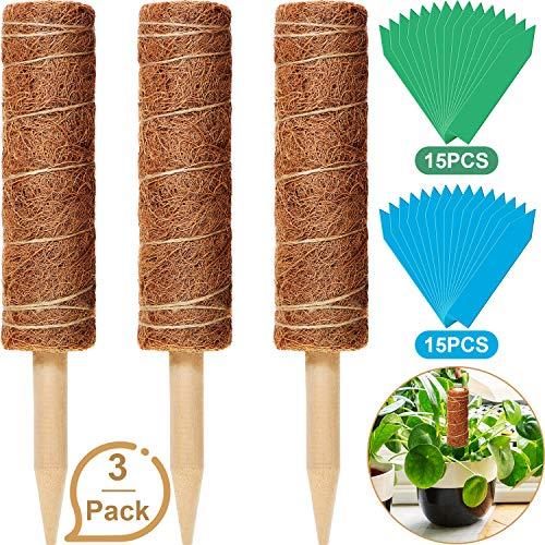 Blulu 3 Paquetes Postes de Tótem de Fibra de Coco 12 Pulgadas Palo de Musgo de Coco con 30 Piezas Etiquetas de Plantas para Soporte de Planta de Enredaderas Plantas de Interior Escalada Extensión