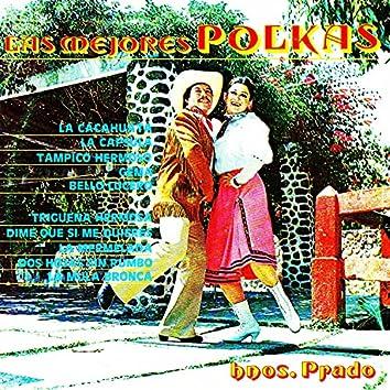 Las Mejores Polkas