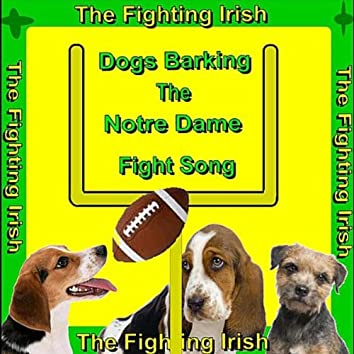 Notre Dame Fight Song (Dogs Barking) [Fighting Irish]