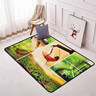Wine Children's Bedroom Carpet Wine Tasting and Grapevine Collage Green Fresh Field Pouring Drink Delicious Soft Fluffy W47.2 x L71 Inch Green Ruby Caramel