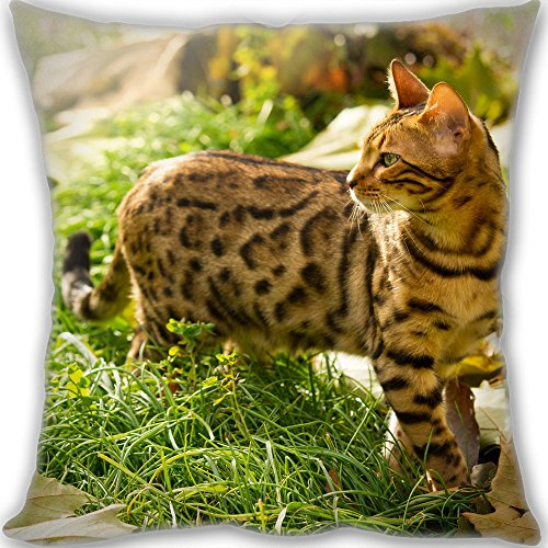 Y.H.X Custom Bengal cat Throw Pillow Standard Size 40x40cm(16x16inch) Small Size 400g(0.88lb) Leaning Cushion (include Pillow Inner)