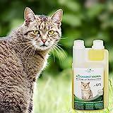 Geruchsneutralisierer Spray für Katzen – natürlicher Katzenurin Entferner – gegen Katzenklo Geruch - 7