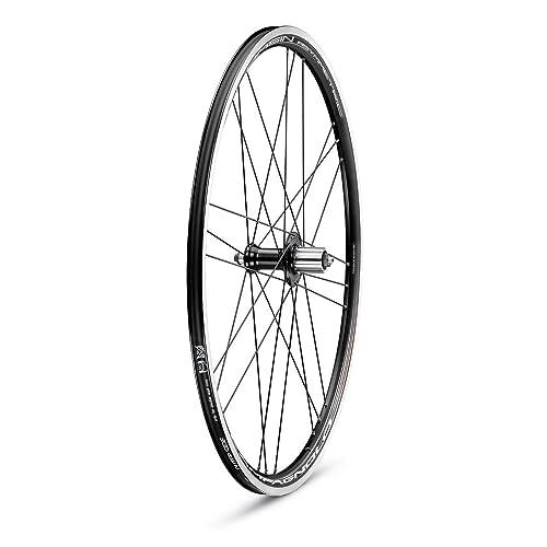 Campagnolo 0136275 - Juego de ciclismo