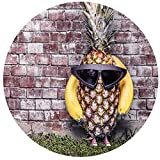 Grandi puzzle rotondi Bicchieri e ananas, 1000 pezzi Puzzle di carta di paesaggi di decompressione per adulti Giocattoli educativi per il tempo libero per bambini Sfidanti grandi regali fatti a mano