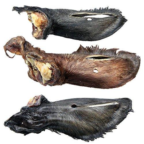 Schecker 15 Stück Kalbsohren mit Fell - Aus der Region - Schöne, große Kalbsohren als Magen-Darm-Putzer ca 1,7 kg