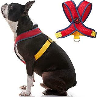 Gooby - Comfort X Head-in Harness V2, Small Dog Harness with Patented Choke Free X Frame, Red&Yellow, X-Large