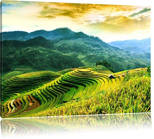 Reisfelder in Vietnam, Format: 120x80 auf Leinwand, XXL riesige Bilder fertig gerahmt mit Keilrahmen, Kunstdruck auf Wandbild mit Rahmen, günstiger als Gemälde oder Ölbild, kein Poster oder Plakat