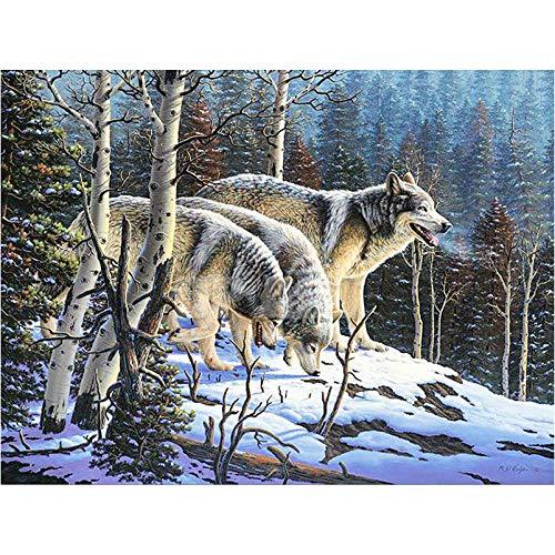 Wolf 5d diamond painting kit full drill Diamante bordado animales Rhinestones Full square Drill Mosaic Kit paisaje 5D DIY Diamond Painting punto de cruz Snow Wolf icon@60x75cm