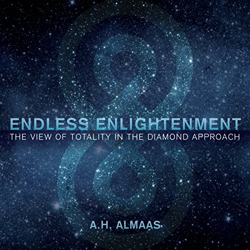 Endless Enlightenment audiobook cover art