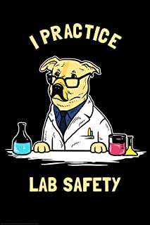 I Practice Lab Safety Labrador Dog Funny Parody LCT Creative Cool Wall Decor Art Print Poster 24x36