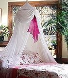 White & Pink Chiffon Furbelow Princess Bed Canopy By SID