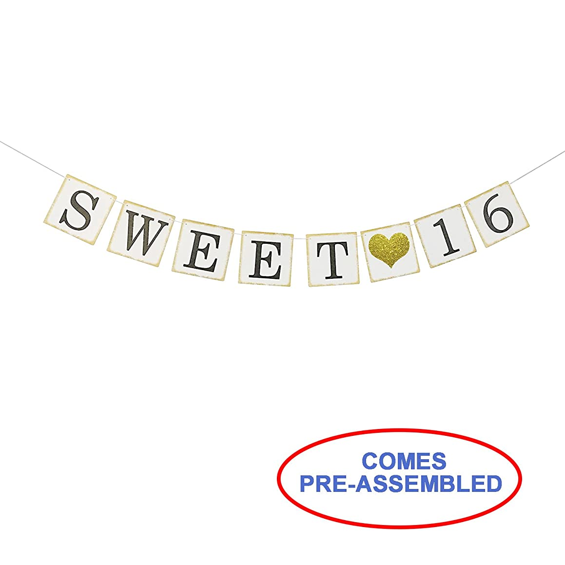 Sweet 16 Birthday Banner Gold Glitter – Sweet Sixteen Decorations, Party Favors, Supplies, Gifts, Themes and Ideas - Vintage Happy Birthday Decorations