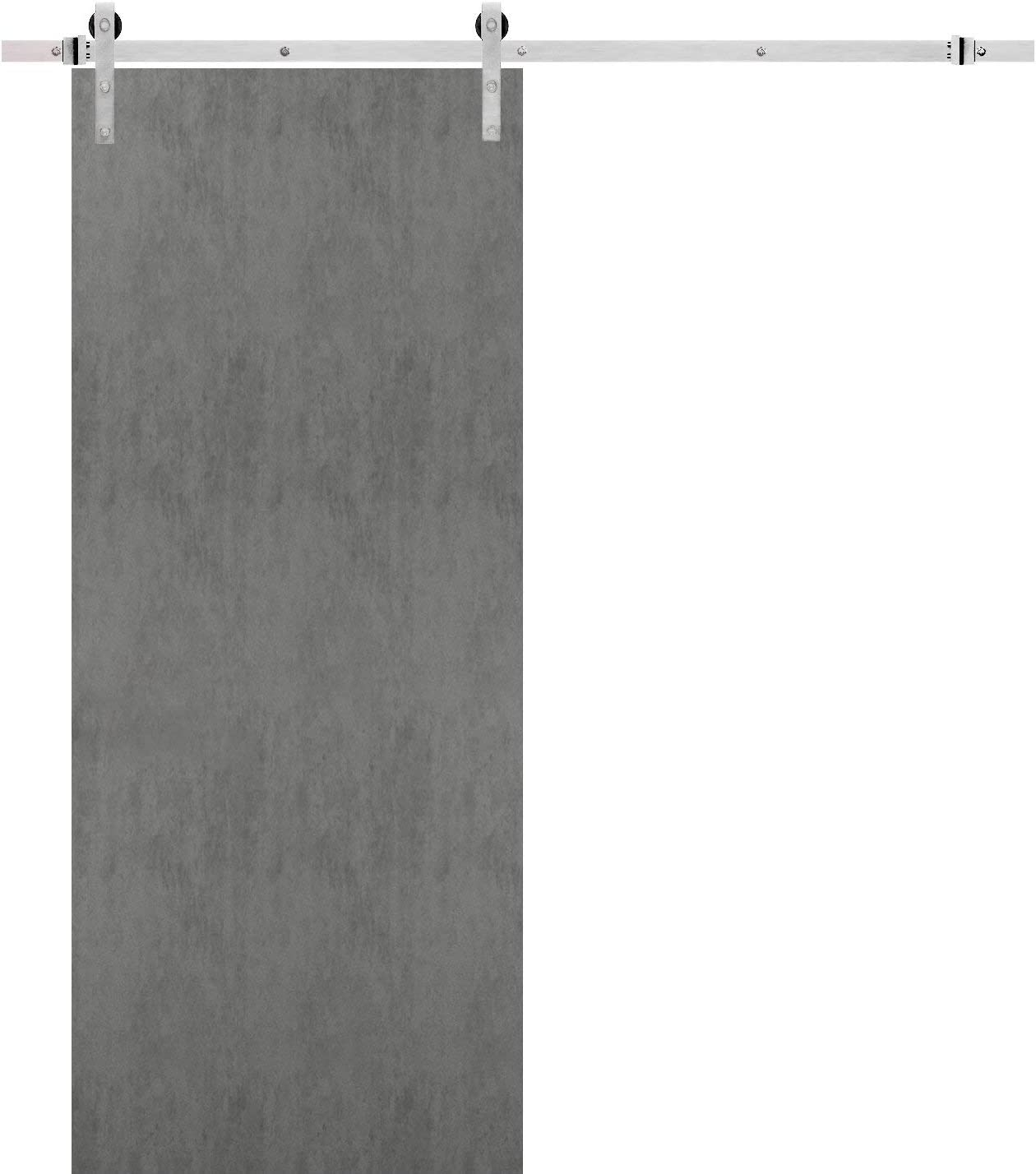 Sturdy Barn Ranking TOP10 Door 18 x 80 Mou Planum Concrete 0010 Top In a popularity inches