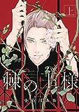 棘の王様 (上) (バーズコミックス ルチルコレクション) - 小石川あお