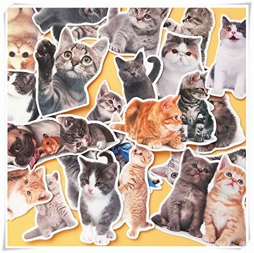 BAIMENG Cute Cat Sticker Sticker Label Luggage Scooter Sticker Diary Decorated Cartoon Animal Illustration Sticker 24 Pcs