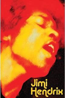 Jimi Hendrix - Face Tapestry