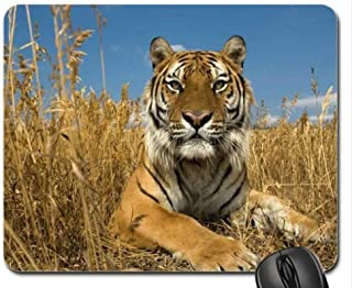 Mouse mat Gaming Mouse pad Sibirian Tiger Mouse Pad, Mousepad (Tigers Mouse Pad)