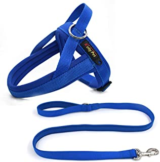 Best harness leash for dogs Reviews